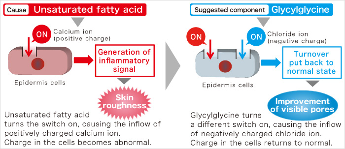Cause Unsaturated fatty acid Suggested component Glycylglycine