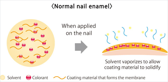 Normal nail enamel