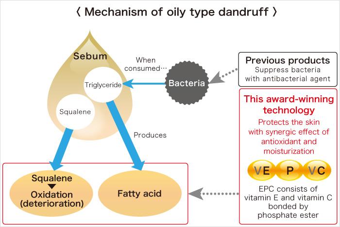 mechanism of oily type dandruff